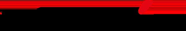 Dagbladet Information logo