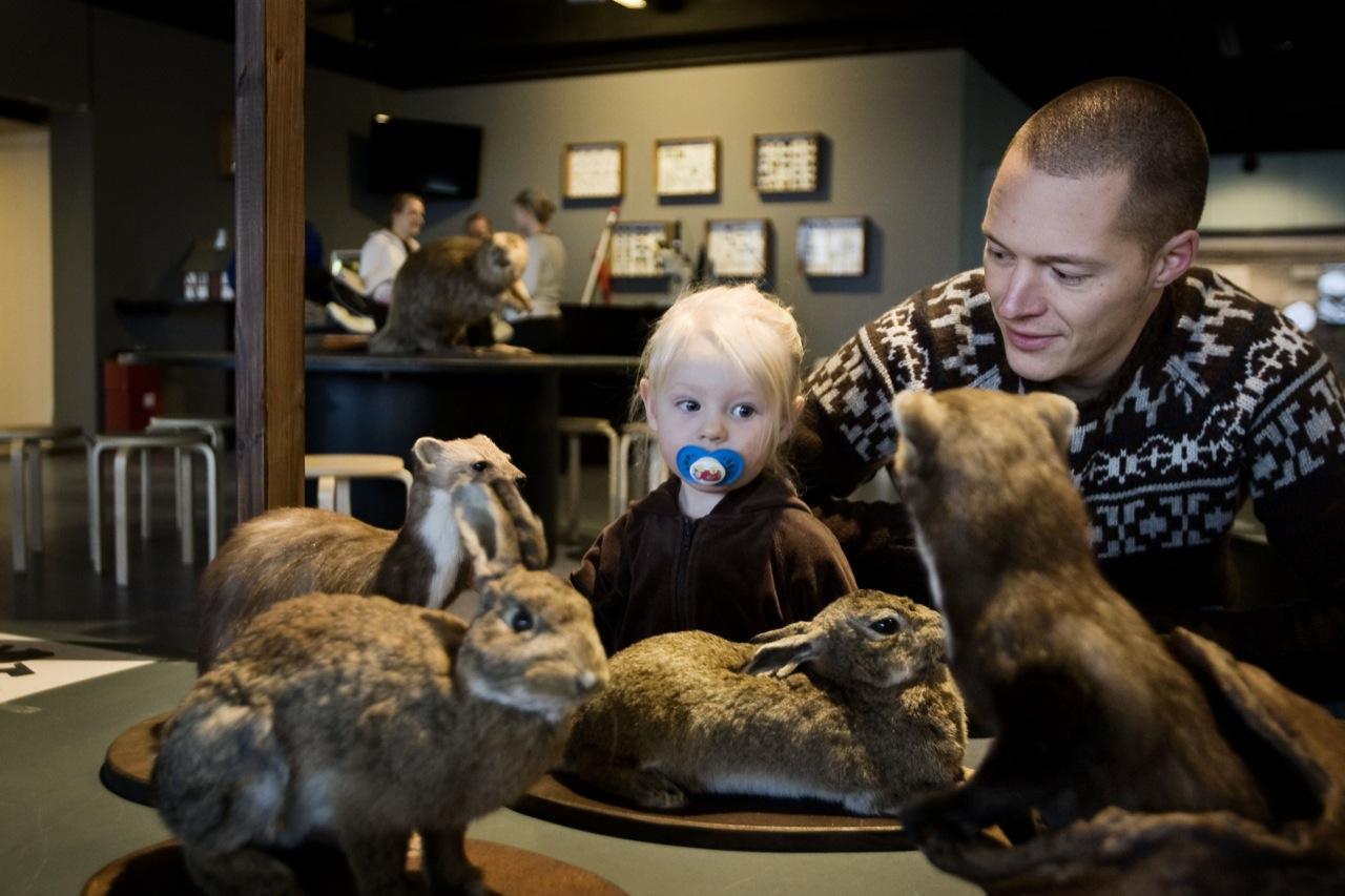 zoologiske museum Århus escort herning