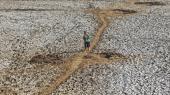 En landsbybeboer går gennem en udtørret dæmning på Java i Indonesien. Flere områder af øen er ramt af tørke, hvilket tvinger indbyggerne til at gå langt for at hente vand.