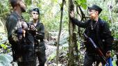 Efter at FARC og den colombianske regering er blevet enige om en fredsaftale, forbereder soldaterne i guerillabevægelsens Front 57 midt inde i den colombianske jungle sig på et liv uden våben.