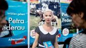 Selv om partiet Alternative für Deutschland, der overgik CDU ved delstatsvalget i Mecklenburg-Vorpommern, forsøger at virke moderat, har det en stærk racistisk kerne, der i sidste ende er med til at anspore den politiske vold, lyder advarslen fra politikforsker Hajo Funke, som netop har skrevet en bog om de voldelige netværk omkring det populære højreparti
