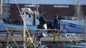 Esben Lunde Larsen vil give tilladelse til øget forurening i Kattegat, så fiskerne kan opføre flere havbrug. Men ny rapport understreger, at farvandet allerede er meget forurenet.