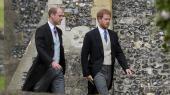 I april fortalte Storbritanniens prinser, William og Harry, for åben skærm om deres personlige erfaringer med depression og angst. Dermed har den britiske kongefamilie kastet sig ind i det, The New York Times kalder »verdens mest ambitiøse forsøg på at behandle depression, angst og andre mentale sygdomme«