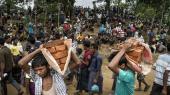 Størstedelen af de omkring 600.000 rohingyaer, der har krydset grænsen til Bangladesh, bor i områder, som tidligere var ubeboede skovarealer, inden de vender hjem til en – i de fleste tilfælde – usikker tilværelse.