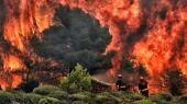 En tragisk ironi er, at jo flere af samfundets midler, vi bruger på at beskytte os mod skovbrande, oversvømmelser og andre effekter af klimaændringer, desto mindre bliver der tilovers til at forebygge, at klimaændringerne eskalerer