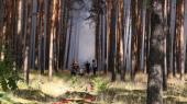 Verden bliver varmere, og derfor bliver hedebølger som den nuværende mere almindelige. Her brandslukning ved Potsdam i Tyskland.