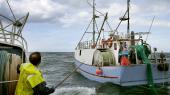 Fiskerne fra Thorup Strandlaver bæredygtigt fiskeri på Skagerrak. Systemet med omsættelige fiskekvoter har omdannet fiskerflåden til fordelfor store fartøjer og medvirket til at skabe færre fiskersamfund. Det er f.eks. kun i Thorup Strand, at erhvervsfiskekuttere trækkes op på stranden.