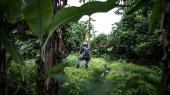 En politimand afsikrer et område godt 70 kilometer fra storbyen Douala i det sydvestlige Cameroun. Her drømmer de engelsktalende oprørere om selvstændighed i et frit Ambazonia.