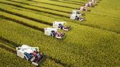 Klodens dyr og planter bliver fortrængt af menneskene, som lægger beslag på mere og mere af kloden til blandt andet fødevareproduktion.