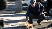 Det nu opstillingsberettigede parti Stram Kurs'formand, Rasmus Paludan, brænder koranen af.