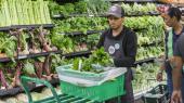 I interviews med 24 Whole Foods-ansatte i supermarkeder over hele USA beskriver medarbejderne et stadig mere presset arbejdsmiljø, der har ført til nedbrydning af den tidligere medarbejdertrivsel i Whole Foods.