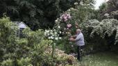 Hans Christian Kirketerp-Møller har som pensionist stadig mange tillidshverv. For eksempel sidder han i Rhododendronforeningens bestyrelse.