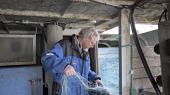 Den hollandske tilstedeværelse i Jammerbugten og Skagerrak er taget markant til siden 2017 og vil ifølge de hollandske fiskeres organisation VisNed bare vokse.For Thorupstrand-fiskerne betyder det, at fangsten af rødspætter i år er nede på omkring en sjettedel af kvoten. Fortsætter det to-tre år, kan det lille samfunds økonomiske eksistensgrundlag være væk. Her sesThomas Højrup, formand for Thorupstrand Kystfiskerlaug.