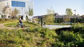 Frederiksberg Kommunes skybrudsprojekter er skræddersyet ind i det eksisterende bymiljø som her i Grøndalen bag Flintholm Svømmehal. Skybrudsprojekterne er et af de seks danske projekter, der er med på den nye Cities100-liste over markante grønne byprojekter.