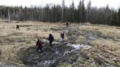 I skoven i det nordlige Rusland, cirka 1.200 kilometer fra Moskva, er det planen, at der skal deponeres ti millioner ton affald fra Moskva over de næste 20 år. Men det møder stor lokal modstand.