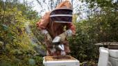 Bestillingen af notatet kom som reaktion på en offentlig debat om biavls konsekvenser for vilde bier. Den var opstået efter daværende fødevare- og miljøminister Esben Lunde Larsen (V) den 1. marts 2017 lempede reglerne for økologisk honningproduktion. Lempelsen førte til, at arealet, hvor der kan produceres økologisk honning, blev tyvedoblet. De nye arealer var i høj grad beskyttede naturområder.