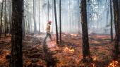I weekenden kæmpede brandfolk stadig med 136 brande i Sibirien over et areal på 430 kvadratkilometer. Sådanne naturbrande er normalt af begrænset omfang i de arktiske områder, fordi der er for køligt og vådt, men varmen og tørken i dette forår og denne sommer har givet optimale betingelser for brand.