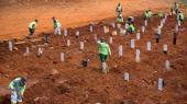 Arbejdere er i gang med at grave nye huller, så man kan begrave døde med COVID-19 i Jakarta i Indonsien. En million mennesker er nu døde med COVID-19.