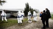 Beredskabet på smittet minkfarm i Jylland.