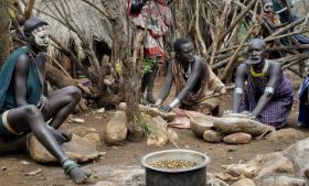 Suri-hyrdefolket har levet med deres kvæg i det sydvestlige Etiopien i århundreder. Nu betyder den globale kamp om jord, vand, fødevareproduktion og biobrændstof, at udenlandske investorer rykker ind og overtager jorden til industriel landbrugs- og plantagedrift. I Suriernes område har malaysiske og saudi-arabiske investorer fået licens til store oliepalmeplantager. Det betyder konflikter – en konflikt som for nylig kostede 31 Surier livet.