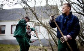 Signe Skov, 22 år, Isabell Sørensen, 22, og Andreas Jensen, 22, er i nytteaktivering 34 timer om ugen rundt om i Aalborg Kommune. Her passer de pensionisternes haver, og den ålborgensiske model får tomlen op af de unge