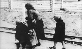 Primo Levis rystende beretning vidner netop om en stædig vilje til trods alle ydmygelser at værne om værdigheden og være tro imod sit håb, længe nok til at overleve – og dermed blive i stand til at fortælle sandheden videre til os andre. På billedet ses ungarske jøder på vej til gaskammeret i KZ-lejren Birkenau-Auschwitz. Arkivfoto
