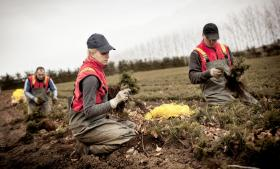 Regeringens nye klimakatalog taler om omlægninger i landbruget, indgreb i transportsektoren m.m. Men regeringen anbefaler ikke selv nogle bestemte forslag. Det har afsporet debatten om klimapolitkken og den grønne omstlling, siger kritikere. Miljøet er slet ikke på de ledende ministres dagsorden, lyder det