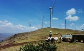 Afrikas største energiprojekt nogensinde, som også bliver Vestas' største vindmøllepark, bliver i disse år bygget i ved Lake Turkana i Kenya. På billedet ses masaier ved en anden vindmøllepark i Ngong Hills ved Nairobi.