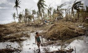 En ny alliance af 20 klimasårbare u-lande – V20-alliancen – efterlyser flere penge til klimatilpasning. Heriblandt Filippinerne, hvis klima og økonomi forventes at blive hårdt ramt at klimaforandringer.