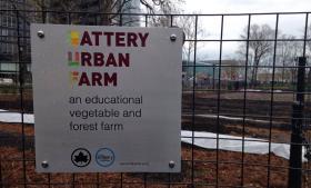 Midt imellem New Yorks skyskrabere ligger The Battery Urban Farm – en grøn læreplads for indskolingsbørn, der bliver undervist i miljø, bæredygtighed og klimaforandringer