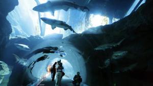 Shopping. Ud over sine 1.2000 butikker har The Dubai Mall også et imponerende akvarium med god udsigt til hajerne.