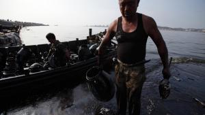 Lokale indbyggere hjælper til med oprydningen efter olieudslippet i Dalian den 16. juli. Foto: Greenpeace/Arthur J D