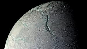 Mens bilen Curiosity netop er landet på Mars, peger flere forskere på, at vi, i jagten på den måske største opdagelse nogensinde - at liv eksisterer andre steder end på Jorden - snarere bør rette opmærksomheden mod en lille måne i kredsløb om Saturn