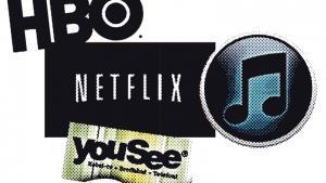 Amerikanske Video on Demand-tjenester som Netflix og HBO er på vej til Danmark, og herhjemme opruster YouSee med sin egen VoD-tjeneste, YouBio. Kampen om forbrugernes gunst – med udvalg, brugervenlighed og pris som våben – begynder lige straks
