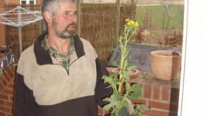 <b>Tidligt forår.</b> Et lunt forår fik i 2008 rapsmarken til at blomstre allerede tidligt i maj. Jens Aage Weigelt var aktiv landmand til kun tre uger før sin død kort inden jul. Privatfoto