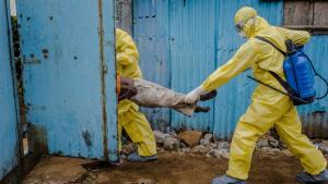 Hvad der først lignede tidligere udbrud, har på ganske kort tid spredt sig til fem lande, og flere end 2.200 er foreløbig døde af ebola.