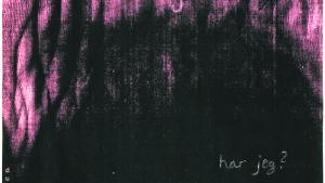 'Vi rus salve' er skabt i en korrespondance mellem digteren Ursula Andkjær Olsen og billedkunstneren Stense Andrea Lind-Valdan. Illustration fra bogen