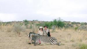 Scenerne i 'Safari' ligner nærmest etnografisk materiale fra gamle dage, kameraet er bare vendt mod jagtturister i Afrika, der smører deres store hvide maver ind i solcreme, læser højt af prislisten over byttedyr og udtaler sig om jagt, natur, død og racisme.