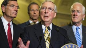 Den republikanske flertalsleder i Senatet, Mitch McConnell, har bestemt, at senatsmedlemmerne værsgo' har at forblive i tordentungeWashington D.C. i hvert fald de første to uger af det, der skulle have været deres ferie.