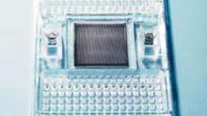Nanoteknologi, gen-baseret medicin og biologiske mikrochips er alle blevet kaldt radikale innovationer, der vil forandre en hel del. Men hvorfor er det ikke sket endnu?