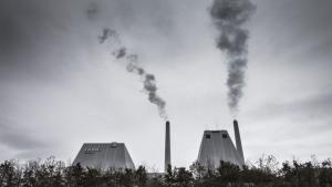 A.P. Møller - Mærsk var i foråret 2016 langt med planer om at købe hele energikoncern DONG, men bestyrelsen besluttede sig i sidste ende at skrinlægge planen