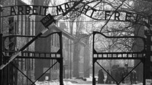 »While I was in the camp the need to tell the story was so strong that I began to describe my experiences there, on the spot, in that German laboratory laden with freezing cold, the war, and vigilant eyes [...]« og Primo Levi skrev videre. Om at være i Auschwitz, om at overleve og om sit efterfølgende forsøg på rent faktisk at leve.