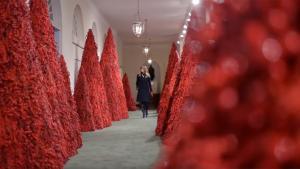 Ikke mindst de blodrøde juletræer er et interessant valg