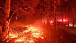 Det ligner helvede på jord. Tusindvis af australiere søger tilflugt på strandene, mens ilden hærger Victoria og New South Wales