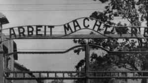 Flere eksperter kritiserer det tyske retsopgør med nazitiden i kølvandet på flere anholdelser og domfældelser over tidligere KZ-vagter, skriver Spiegel. Meget kunne være gjort for flere årtier siden