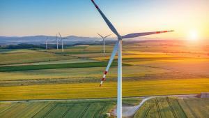 Vil udvikling af ny teknologi i sig selv redde verden fra klimaforandringer? Ikke med mindre vi venter i meget lang tid eller poster masser af penge i statsstøtte, skriver videnskab.dk