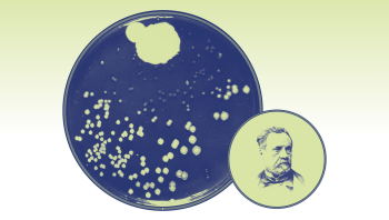 Menneskets opdagelse af bakterier førte til en helt ny forståelse af livet – og til opfindelsen af det mest mirakuløse lægemiddel, verden endnu har set: antibiotika
