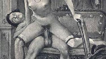 Pornorejse. Siden lovliggørelsen af pornoen fik sit startskud med frigivelsen af tekstporno for præcis 40 år siden, er genren blevet medieformaternes og under-verdnernes avantgarde og samtidig en masseproduktion, der sætter spor i alle lag af kulturen og hvert år genererer indtægter for hundreder af millioner kroner