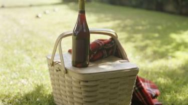 Med alt det, der kan gå galt på en skovtur, er et godt valg af vin et must