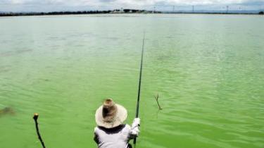 I mange tilfælde er forureningens konsekvenser uoprettelige, såsom det årlige tab af 20 søer på grund af det forringede miljø. I en understregning af situationens alvor påpeger Pan Yue, der er viceleder for Kinas Bureau for Miljøbeskyttelse, at en fjerdedel af vandet i Kinas syv største floder ikke længere kan understøtte flodernes dyreliv og oven i købet er farlige at bade i.